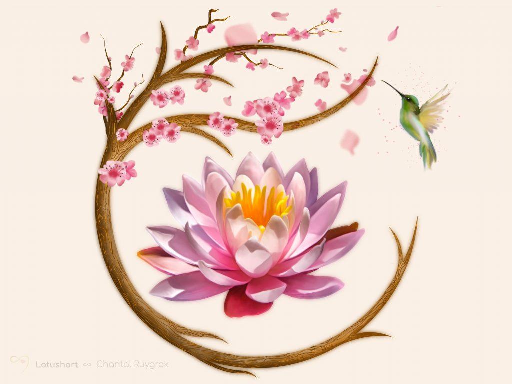 Modder ∞ Lotus - Lotus Illustratie